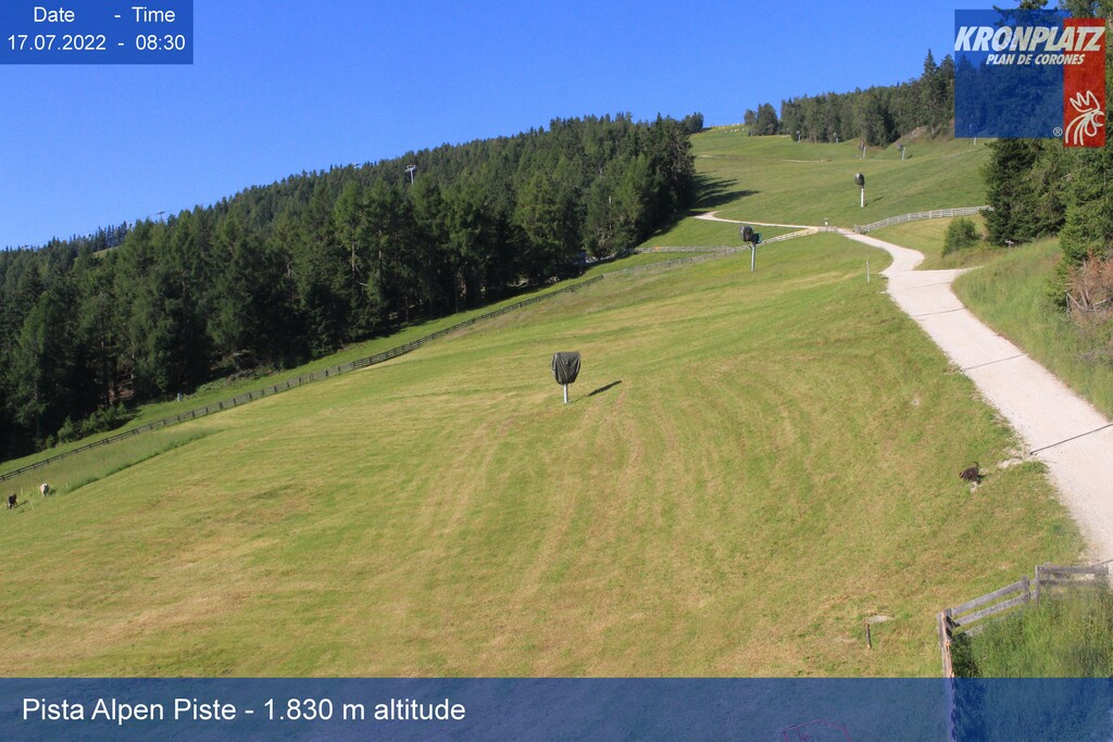 Webcam Pista Alpen - Valdaora,  Plan de Corones, Dolomiti Superski,